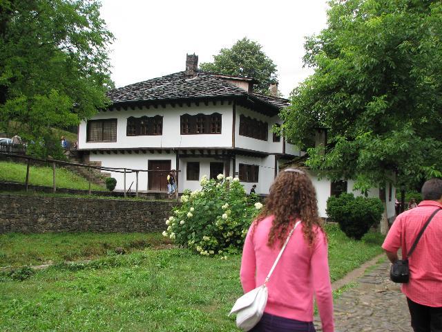 Етнографски музей на открито Етър